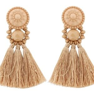 Sassy Fringe Earrings